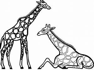 Cartoon Giraffe Black And White Widescreen 2 HD Wallpapers ...