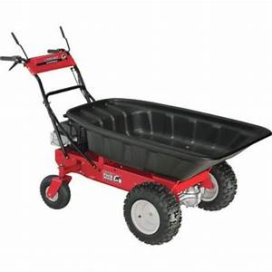 Beneficial motorized garden cart vegetable garden for Motorized garden cart