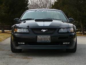 FamousFamily32 1999 Ford Mustang Specs, Photos, Modification Info at CarDomain