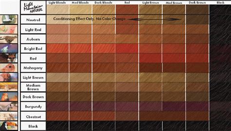 Hair Colors List Pictures by Brown Hair Color Chart Coloring Hair And Hair