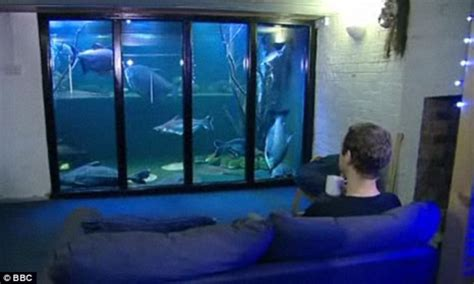 home aquarium in britain by heathcote