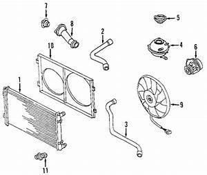 2000 Vw Beetle Tdi Engine Diagram : 2000 volkswagen beetle engine coolant thermostat housing ~ A.2002-acura-tl-radio.info Haus und Dekorationen