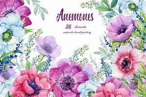Anemones, Watercolor, Flowers, Clipart, Purple, Flowers, Floral, Elements, Flower, Backgrounds