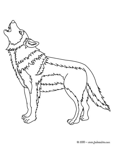 coloriages coloriage d un loup gris fr hellokids