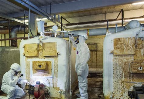 asbestos removal project management asbestos experts