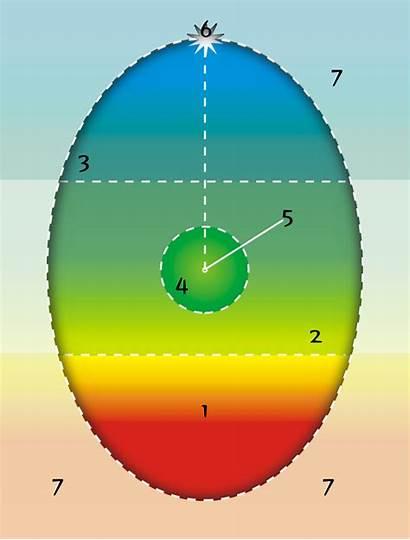 Egg Diagram Psychosynthesis Roberto Assagioli Quotes Self