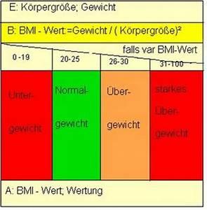 Bmi Berechnen Formel : meine erstellten programme in der stufe 12 mein projekt bmi rechner ~ Themetempest.com Abrechnung