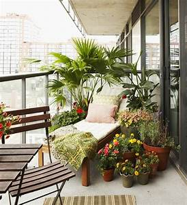 Balkon Liege Für Zwei : welche palme fr den balkon das beste aus wohndesign und m bel inspiration ~ Sanjose-hotels-ca.com Haus und Dekorationen