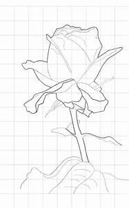 Dibujos De Ramos De Flores Para Bordar Perfect Dibujos De Ramos De