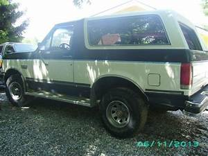 Purchase Used 89 Bronco Xlt Full Size Classic In Knoxville