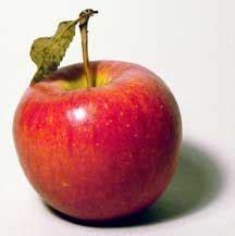 Apple Fruit - Health Wiki