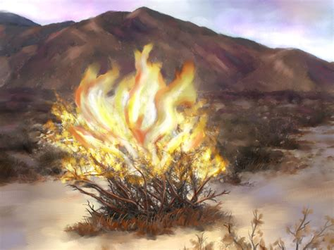 burning bush nikos sermon august 28 quot in your wildest dreams your burning bush quot