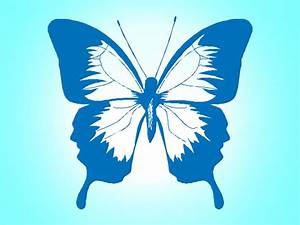 Butterfly, Vector