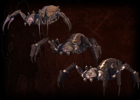 neverwinter spider companion darkest tomb ign bandedehoufs undead degats