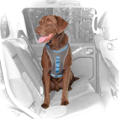 kurgo gray blue journey dog harness petco