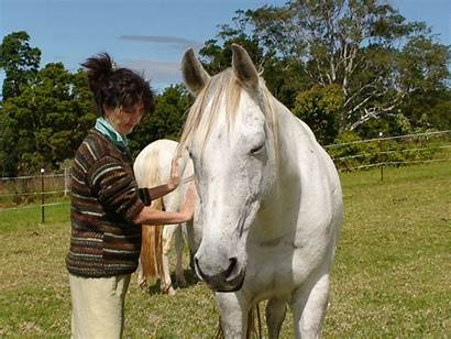 Horse Human Training Therapy Gift Receiving Giving