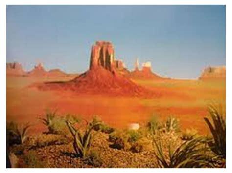 Desert Terrarium Background Desert Backgrounds Pictures Wallpaper Cave