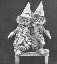 Vintage Cats Dressed as People