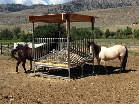 hay feeders for horses h 8 hay feeder save money time klene pipe