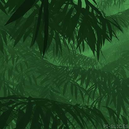 Branches Forest Aesthetic Anime Gifs Leaf Trippy