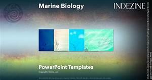 Quiz Show Powerpoint Template Marine Biology Powerpoint Templates