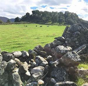 Land In Schottland Kaufen : schottland loch ness hat mehr geheimnisse als nessie welt ~ Lizthompson.info Haus und Dekorationen