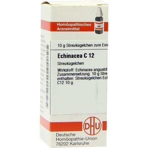 Echinacea Globuli Katze