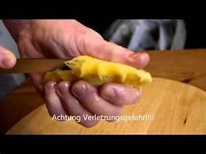 Kirschlorbeer Selber Ziehen : litschi die vermehrung ist ganz einfach lychee for bonsai doovi ~ Orissabook.com Haus und Dekorationen