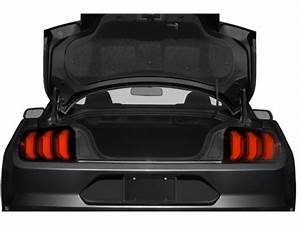 New 2021 Ford Mustang EcoBoost Fastback 2-door Sub-Compact Passenger Car Kingston, Ontario