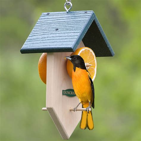 duncraftcom duncraft orange fruit feeder