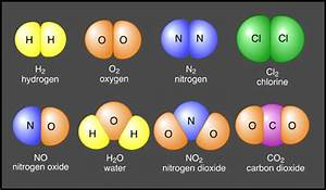 Molecules and Compounds : Anatomy & Physiology