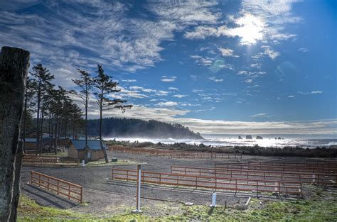 accommodations quileute oceanside resort