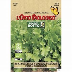 Lettuce Oak Leaves 0 1gr