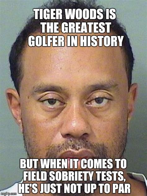 Tiger Woods Memes - not up to par imgflip