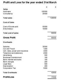 Sample Profit and Loss Statement Template