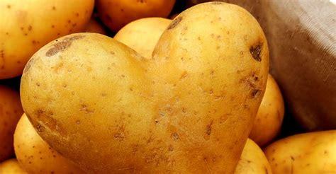 cuisiner des pommes de terre la pomme de terre un légume fondamental dossier