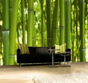 die besten 25 bambus tapete ideen auf pinterest kinder With balkon teppich mit national geographic tapete