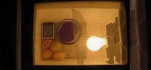 How To Create Your Own Homemade Egg Incubator  U00ab Chickens