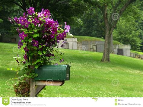 mailbox  purple flowers stock photo image