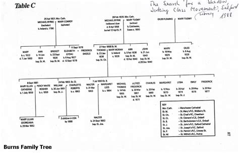 ancestry chick family trees