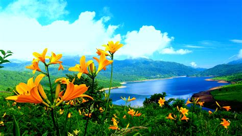 nature images wallpaper  pictures photography pics