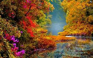 colorful scenery images