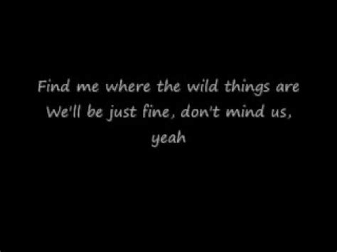 wild  alessia  lyrics youtube