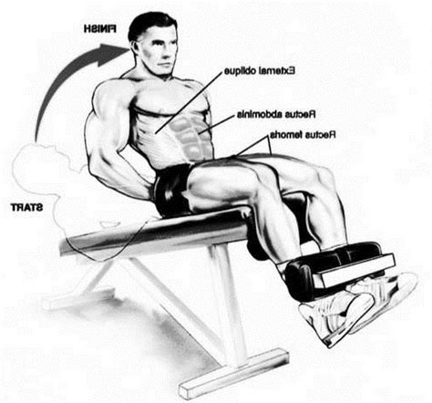 Chair Sit Ups Muscles by Decline Bench Sit Ups Bodybuilding Wizard
