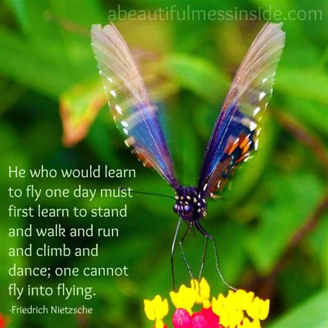butterfly encouragement quotes quotesgram