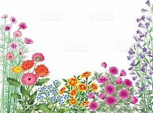 Garden Flowers Border stock vector art 165721516   iStock