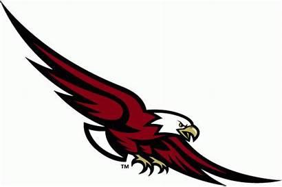 Boston Eagles College Logos Eagle Alternate Soaring
