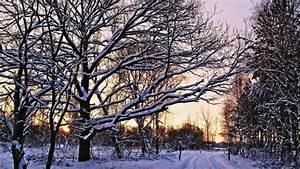 Die Schönsten Inneneinrichtungen : die sch nsten winterbilder der user zdfmediathek ~ Indierocktalk.com Haus und Dekorationen