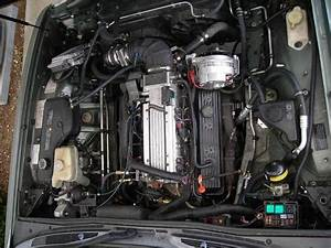 94 Caprice Wiring Diagram