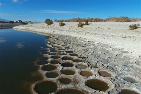 salton sea tilapia beds dronestagram